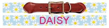 Daisy Needlepoint Dog Collar